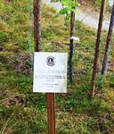 LC Posion saama Kasvuvoima -palkinnon taulu paljastettiin Lomakeskus Himmerkissä